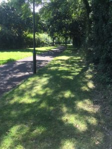 Danes Green Shaded Path